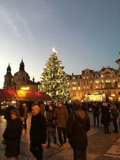 Christmas tree Prague