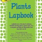 Lapbooks are a fun way to enhance student learning about a given topic. It is a complete portfolio of information that any child can do! This lapbo...