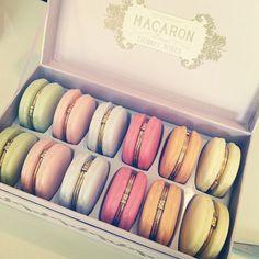Macaron Trinket Boxes - Waiting On Martha - 3