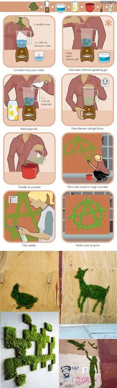Moss art - MemePix