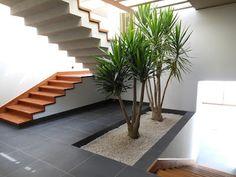 Escalera: madera, zoclo, jardinera.