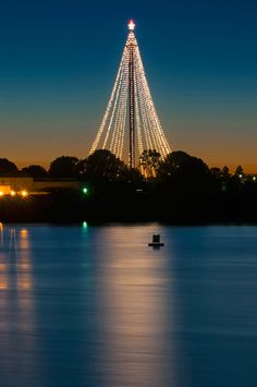 christmas in san diego - Google Search
