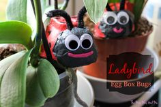 The Mini Mes and Me: Mini Makes Ladybird Egg Box bugs spring craft activity Crafts For Kids, Diy Crafts, Spring Crafts, Craft Activities, Little People, Bugs, Crafty, Christmas Ornaments, Holiday Decor