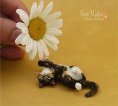 Flipflop Calico Kitten Sculpture 1:9 scale by Pajutee.deviantart.com on @deviantART