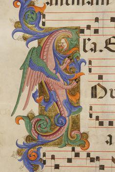 Iniziale I autore: Filippo di Matteo Torelli  tecnica: tempera e pennello
