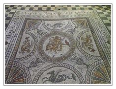 Fishbourne Roman Palace, the Dolphin Mosaic   Flickr - Photo Sharing!