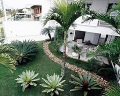 50 Florida Landscaping Ideas Front Yards Curb Appeal Palm Trees_49