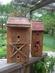 Graciosas casas de passarinhos!