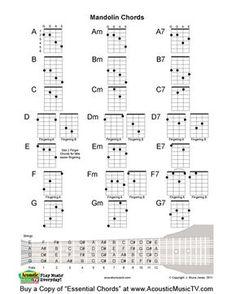 Hawaii Ukulele 2R2L Locking Key Tuner Stimmwirbel für 4 String Guitar Accs