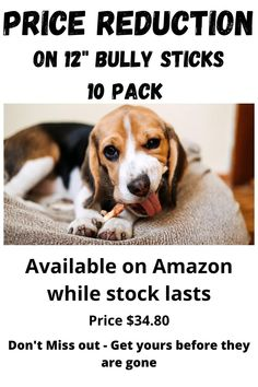 """Price reduction on 12"""" Bully sticks while stock lasts. Don't miss out on these great chews your dog will love. These Chews are a great source of amino acids. Long-Lasting Chews that also Promotes Healthy Teeth and Gums. Bully Sticks, Price Reduction, Healthy Teeth, Amino Acids, Bullying, Promotion, Pet Products, Pets, Dog"""