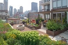 Rooftop terrace/garden with edible plants and fire pit.