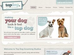Showcase of Beautiful Pet Websites Batman Dog Costume, Unicorn Dog Costume, Therapy Dog Training, Therapy Dogs, Pet Websites, Blue Weimaraner, Dog Quotes Love, Dog Collar Tags, Funny Dog Memes