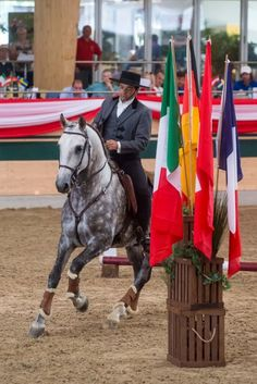 HORSE NEWS - The equestrian Agency - MAGNA RACINO Spring Festival: Bruno Pica da Conceição (POR) stays on course for title in the Working Equitation World Cup - Austria in sixth and nine