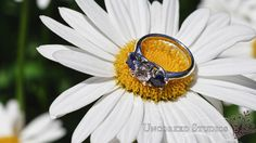 Engagement Ring with Sapphires  Uncorked Studios, LLC