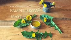 Pampelišková mast Herbs, Homemade, Beauty, Syrup, Home Made, Herb, Beauty Illustration, Hand Made, Medicinal Plants