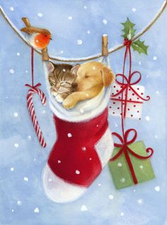 Lisa Alderson - LA - puppy kitten stocking.jpg