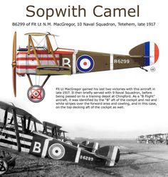 Sopwith Camel of  Fl.Lt. N.M. MacGregor of 10 Naval Squadron, Tetehem, late 1917