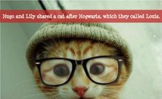 Hugo and Lily shared a cat after Hogwarts, which they called Louis.