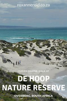 Guided marine walk at De Hoop Nature Reserve in the Overberg #SouthAfrica #travel