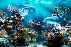 Fondo pantalla Delfines bajo Mar