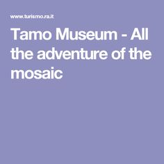 Tamo Museum - All the adventure of the mosaic