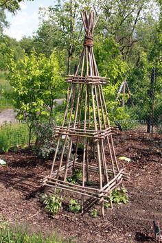 Декоративные огороды - Декоративные огороды