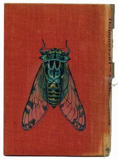 Image result for Ohara Koson, Cicada on the Trunk of a Willow Tree Sold: Log in to view