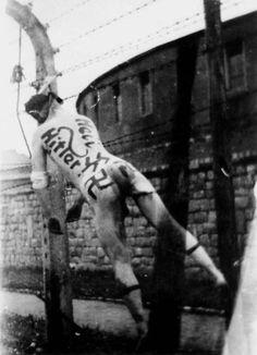 El comandante Franz Ziereis del Campo de Gusen, es ejecutado por los prisioneros cuando liberan el campo. Todos los prisioneros que iban a Gusen era para ser asesinados, no era un campo de trabajo. Sobre todo llegaban del Campo de Mauthausen, el más cercano. Mayo de 1945.