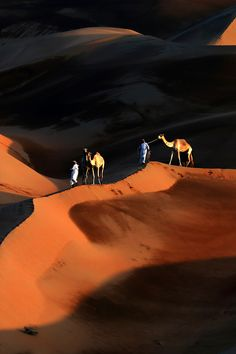 You can't go all the way to Dubai and not ride a camel, right? This half-day tour will check that off your list, along with other adventures like sandboarding down desert dunes, getting a henna tattoo and eating al fresco under the stars. 4x4 Dubai Desert Safari, viator.com.   - HarpersBAZAAR.com