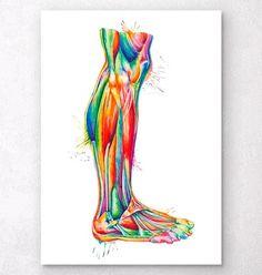 Watercolor Art Prints - Anatomy Art - Codex Anatomicus – Page 4 Neck Muscle Anatomy, Leg Anatomy, Anatomy Drawing, Human Anatomy Art, Presents For Doctors, Medical Art, Medical Illustration, Paper Illustration, A Level Art