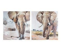 Set de 2 cuadros pintados al óleo Elefante - 100x100 cm