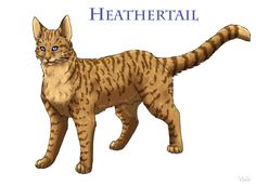 I think Lionblaze made the right decision to leave Heathertail because it could've caused a lot of trouble. She's still a great she-cat though!