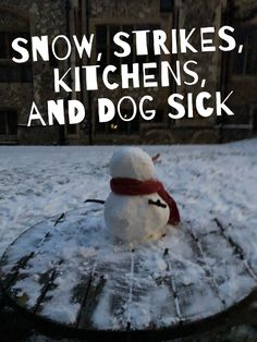 Snow, Strikes, Dog Sick, Interior Design. A fun-filled week in the Warrior Household Also, a tribute to @penguinstoves #blog #family #snow #design #kitchen #dog #labradoodle #dogsick #cakes