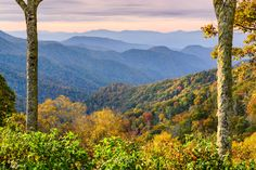 This picture of the Smoky Mountains in the fall is almost too beautiful to be real.
