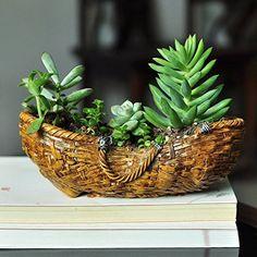 Miniature Fairy Garden And Terrarium Woven Basket