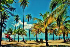 una famosa playa en Puerto Rico