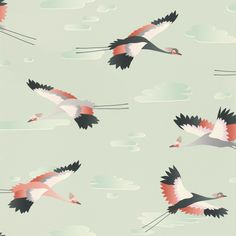 This fantastic Cranes Wallpaper will add a touch of colour to your home. The stylish design features a repeat pattern of cranes in flight, in complimentary tones of grey, black, white and coral. This is set on a pale green background with a smooth matte finish. This high quality wallpaper is easy to apply and would look great when used to create a feature wall or to decorate an entire room.