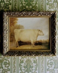 primitive cow