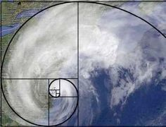 The Golden Mean - Golden Ratio - Fibonacci