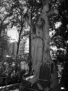 Cementerio ingles de Malaga.