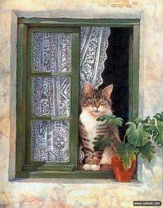 Кошачьи сказки (75 фото) | Релаксик
