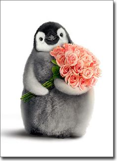 Penguin With Flower Bouquet Funny Valentine's Day Card by Avanti Press | Home & Garden, Greeting Cards & Party Supply, Greeting Cards & Invitations | eBay!