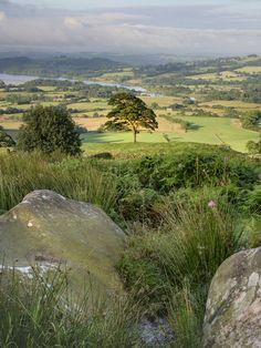 Staffordshire, England by Matt Lethbridge