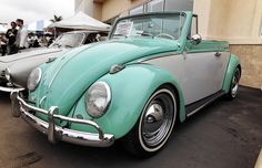 Two Tone VW Beetle   Classic Two Tone VW Beetle convertible ready for show