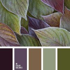 Green, purple, gold