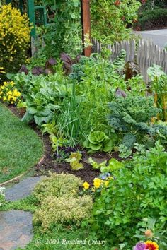 Edible Garden How-To -  Rosalind Creasy's 100-Square-Foot Garden - by estela