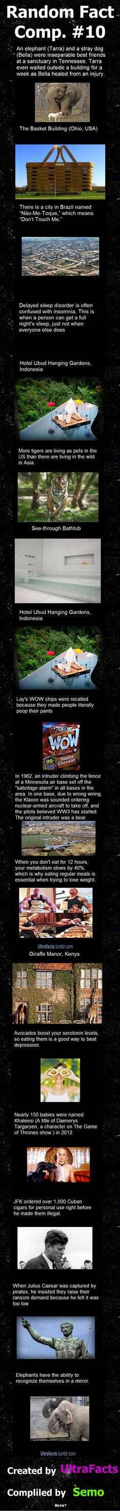 Random Fact Comp 10  // funny pictures - funny photos - funny images - funny pics - funny quotes - #lol #humor #funnypictures