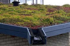 functional green roof