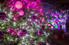 Christmas at the Anatole, Dallas