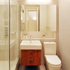 Small Bathroom Design Ideas, Pictures, Remodel and Decor. Medicine cabinet over sink and toilet.